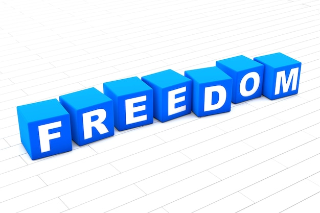 3d rendered illustration of the word freedom