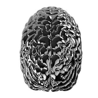 3d rendering black human brain isolated on white