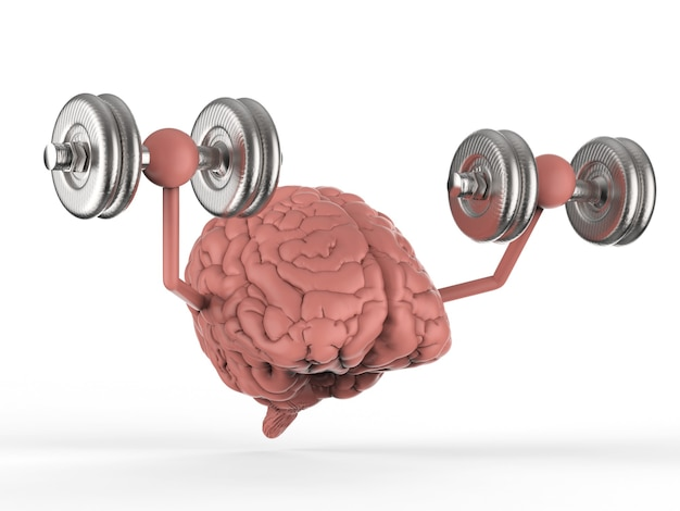 3d-рендеринг мозга, держащего гантели на белом фоне