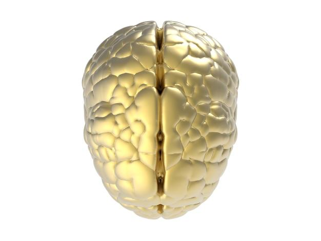 白い背景に金色の脳をレンダリングする3d