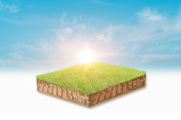 3d rendering green grass design on bright blue sky background
