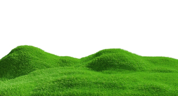 3d rendering. green grass hill isolated.
