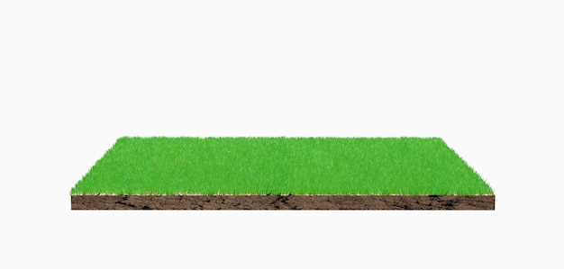 3d rendering. green grass land piece isolated on background.