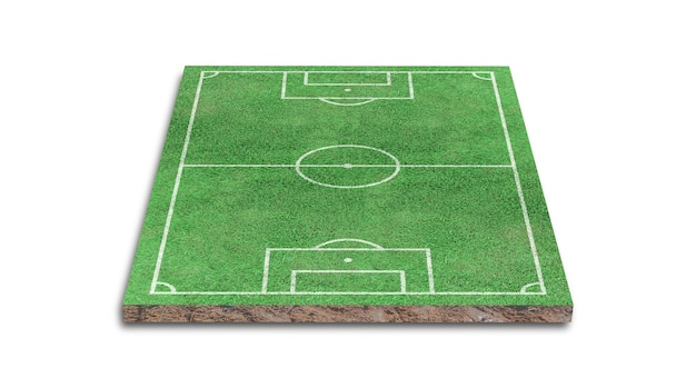 3d rendering. green grass soccer field isolated.