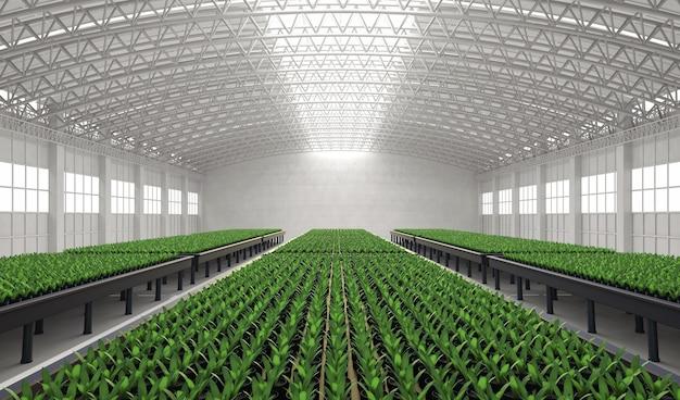 3d рендеринг оранжереи или оранжереи, полной растений