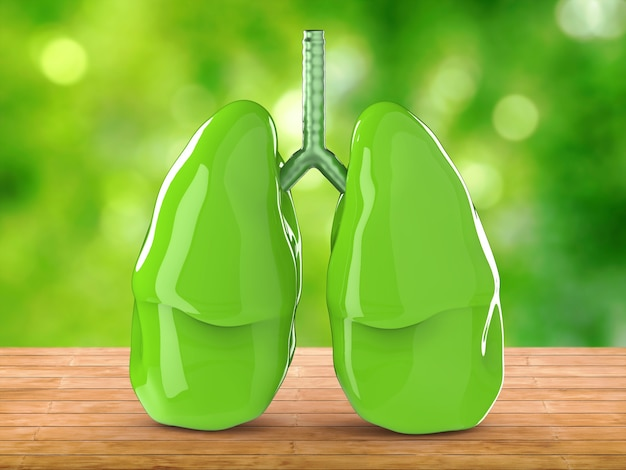 3d rendering green lungs with green background