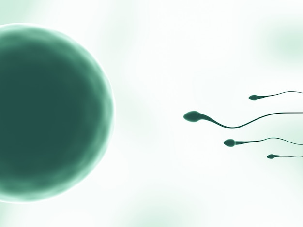 3d rendering. green tone sperm and egg cell.