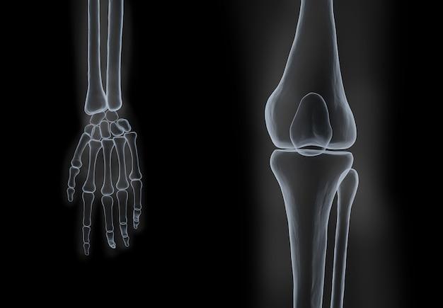 黒の背景に人間の手と膝の骨のx線フィルムを3dレンダリング