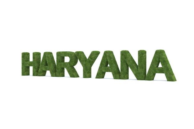 흰색 배경에 고립 된 녹색 잔디 haryana 단어의 3d 렌더링