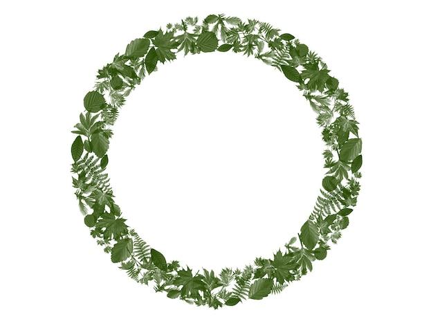 텍스트 및 광고 단어를 추가하기 위해 주위에 잎이있는 텍스트 프레임의 3d 렌더링