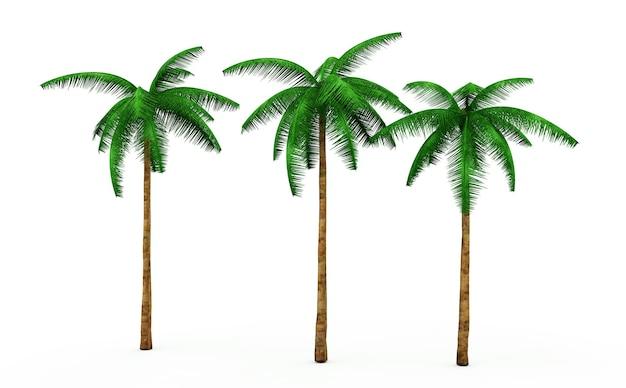 ニュートラルな白い背景の上の3つのヤシの木の3dレンダリング