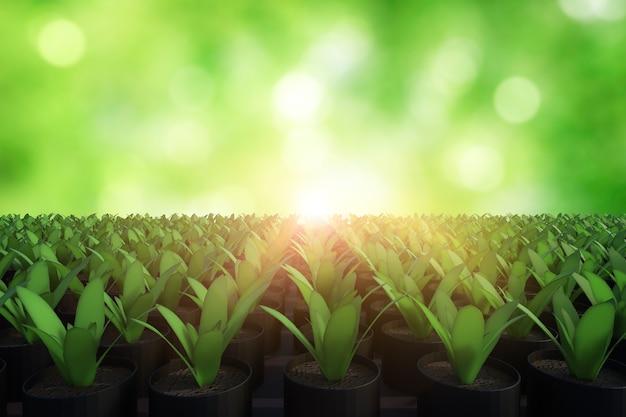 3d-рендеринг поднятого растения в грядке с ярким светом