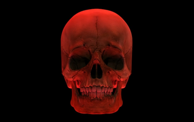 3d rendering. red human head skull bone isolated on black background. horror halloween concept.