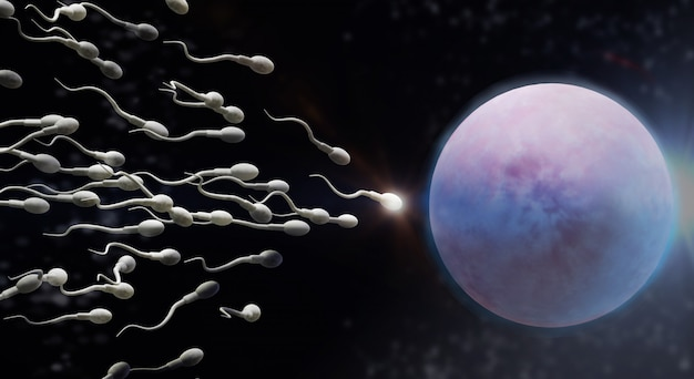 3d rendering sperm and egg cell science content.
