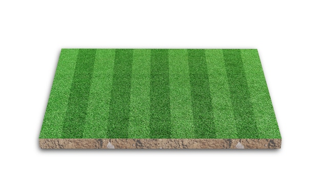 3d rendering. stripe grass soccer field, green lawn  football field, isolated on white background.