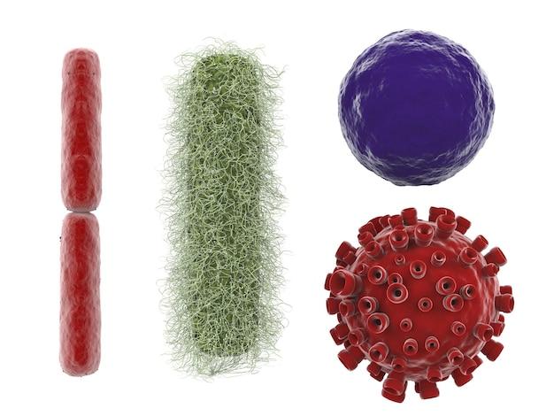 3d 렌더링 다양 한 바이러스와 박테리아 화이트 절연