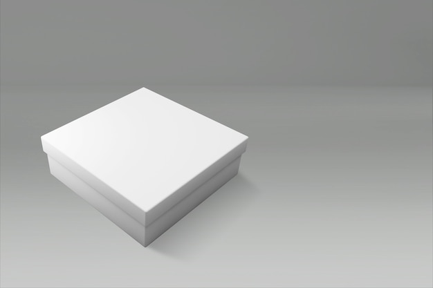 3d rendering of a white rectangle box with a closed lid on gray