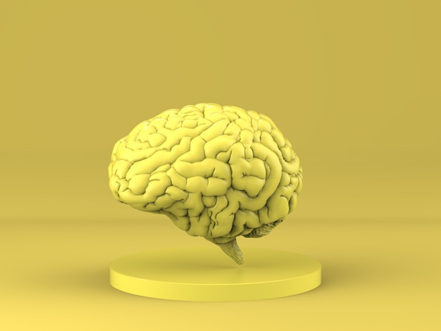 3d rendering yellow human brain on yellow background