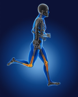 3d running medical man with skeleton knees highlighted