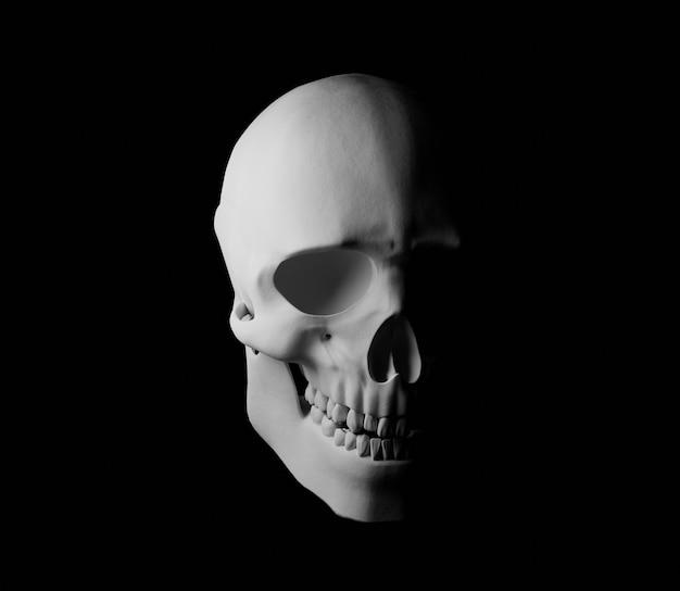 3d 해골 그림 소름 끼치는 헬로윈 무서운 어두운 공포