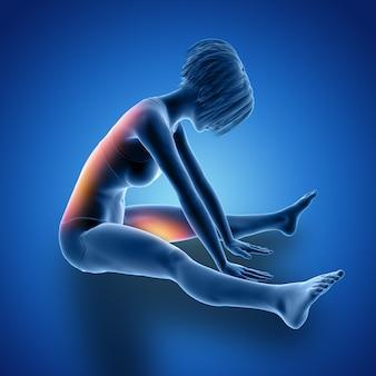 使用された筋肉が強調表示された着席ストレッチの3d女性