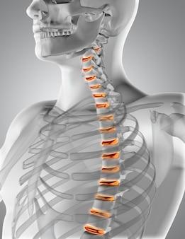 ハイライト表示され、脊椎内のディスクを持つ男性の医療図形のレンダリング3d