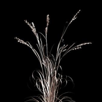Золотой цветок бумаги и травы. 3d-рендеринг.