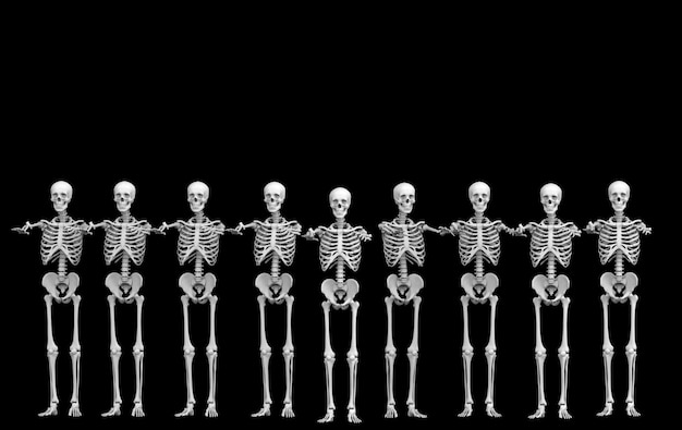 3d-рендеринг. строка команды косточек черепа призрака человеческая скелетная на черноте. ужас хэллоуин.