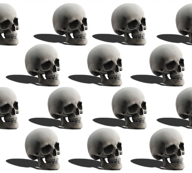3d-рендеринг. безшовная картина кости черепа человеческой головы на белизне.