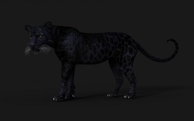 3d иллюстрация черная пантера изолят на черном