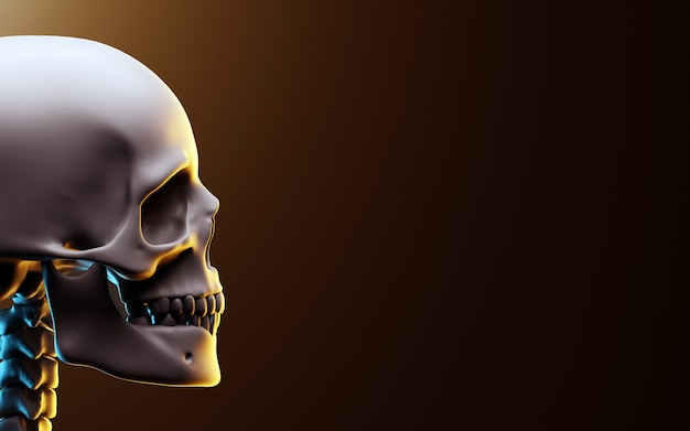 暗い背景の頭蓋骨。 3dイラスト
