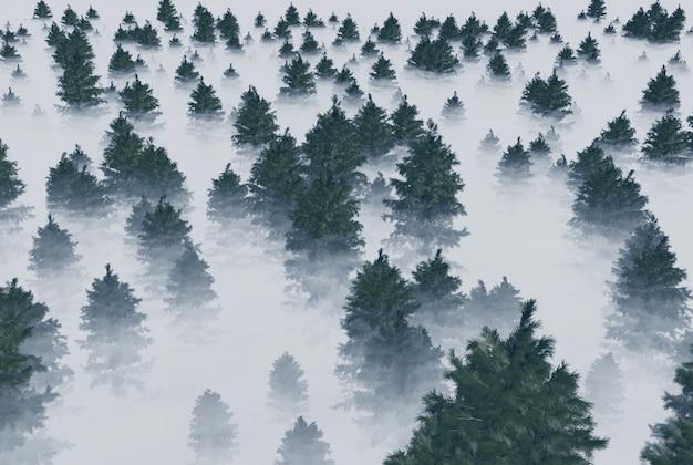 霧の中のモミの木の森。 3dレンダリング