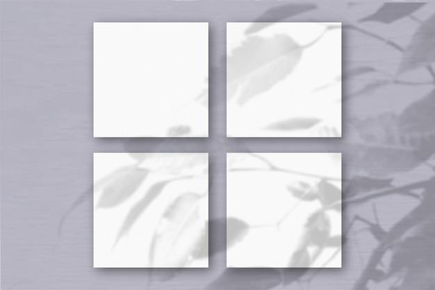 4 квадратных листа белой текстурированной бумаги на сером фоне стены. наложение мокапа с тенями растений. естественный свет отбрасывает тени от экзотического растения. плоская планировка, вид сверху. горизонтальная ориентация