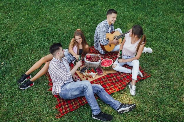 フォレスト、週末のコンセプト、夏を楽しんでいる4人でピクニックを持っている若いカップル
