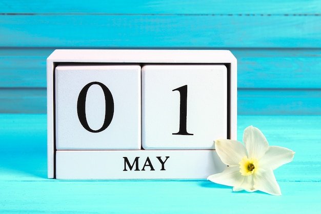 テキストと白い木のカレンダー:5月1日。青い木製のテーブルの上の水仙の白い花。労働者の日