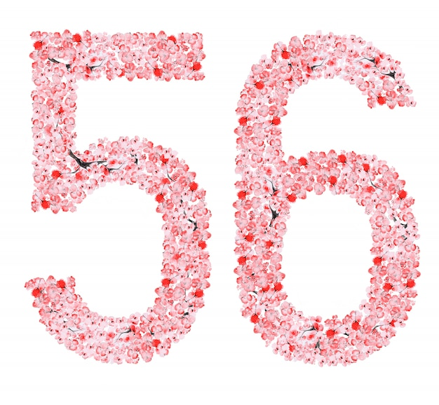 さくらフラワーナンバー5 6