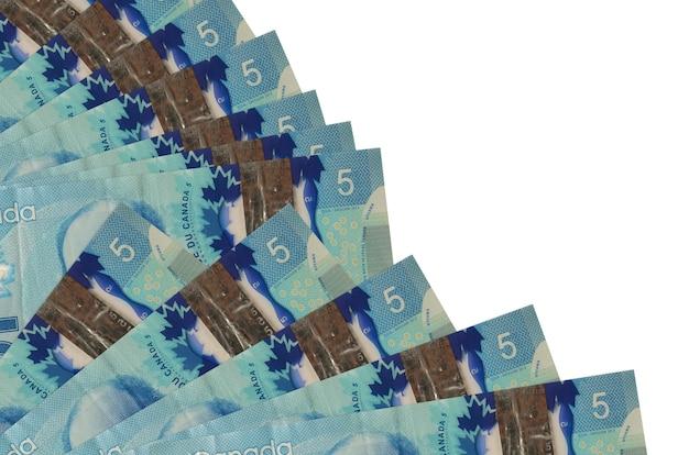 Счета 5 канадских долларов лежат, изолированные на белой стене с копией пространства, сложенные в вентилятор крупным планом. понятие времени выплаты жалованья или финансовые операции