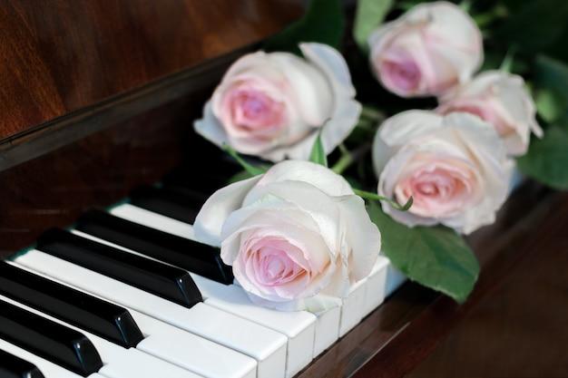 クローズアップ5淡いピンクのバラはピアノのキーボードに横たわっています。