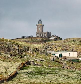 灯台と小さな花の花を見る。 5月、スコットランド、イーストロージアン