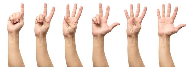 白で隔離される5つのカウント男性の手