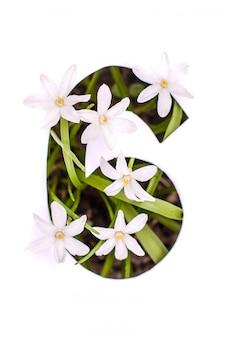 番号6:小さな花を持つ白いステンシル