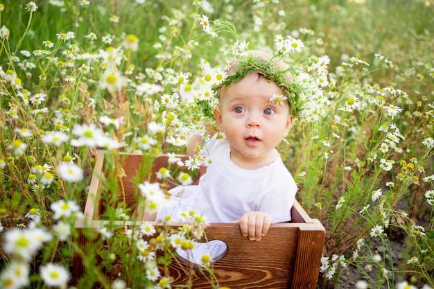 Портрет девочки 7 месяцев, сидящей на ромашковом поле в венке в белом платье, здоровой прогулки на свежем воздухе