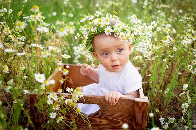 白いドレスを着た花輪のカモミールフィールドに座っている生後7ヶ月の女の赤ちゃんの肖像画