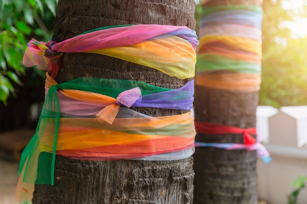 木または布の周りの色の布ラップタイの仏教の信仰のために寺院に縛られた7色のタオルで包まれた梅の木の多色の布