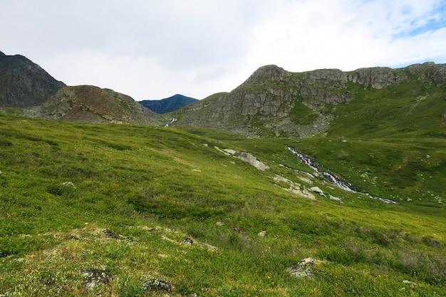 7つの湖の谷にある緑の牧草地。アルタイ山脈。シベリアロシア