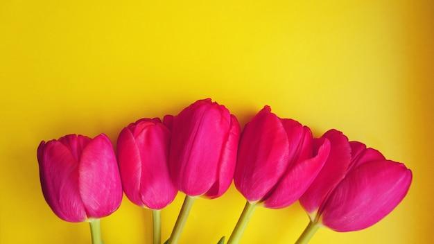 8 марта с женским днем. концепция весны. розовые тюльпаны на желтом фоне. копировать пространство