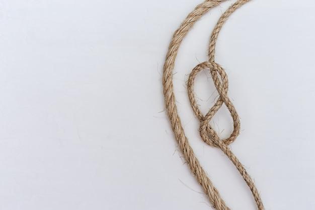 8の字結び目はタイプ海結び目です