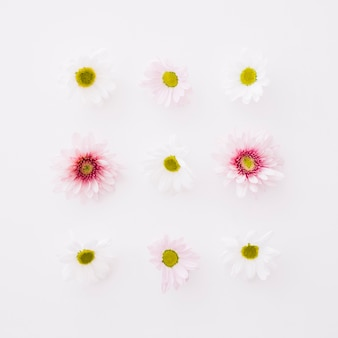 9 small flowers