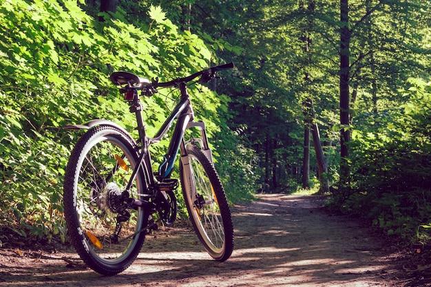 Женский горный велосипед в лесу
