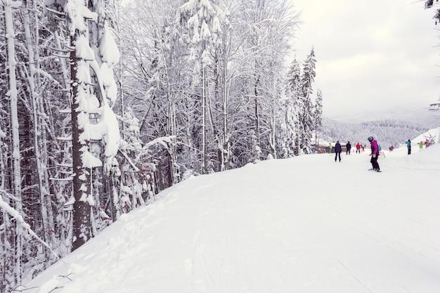 スキーヤーとスノーボーダーが山を下ります
